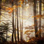 piekne krajobrazy14 150x150 Scenerie