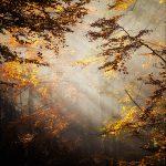 piekne krajobrazy2 150x150 Scenerie