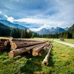 tatry dolina bialej wody2 150x150 Scenerie